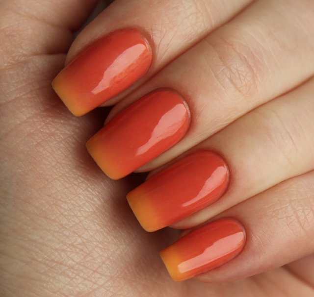 EL Corazon Active Bio-gel Color gel polish Termo 423/808
