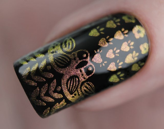 краска для стемпинга, Special paint for stamping nail art Stm-61 Duo amazing cat